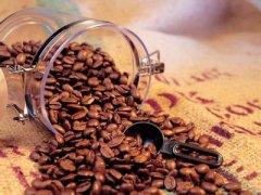这里的咖啡不仅仅是一种饮品