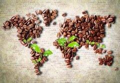 """并非""""阿拉比卡""""就代表好咖啡!"""