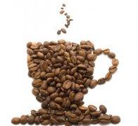 老挝品质咖啡种植园 DAO HEUANG