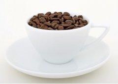 什么是滤杯? 手冲咖啡的工具介绍