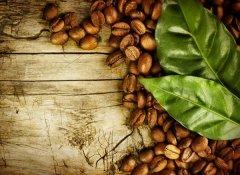 教你识别特色咖啡豆的种类 如何鉴别咖啡的种类? 咖啡的分类介绍