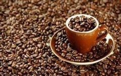 瑰夏咖啡与蓝山咖啡哪个更好【精品咖啡】埃塞俄比亚耶加雪菲日晒