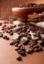 咖啡豆的种类介绍