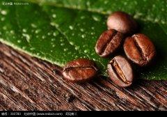 """详解""""咖啡味""""风味轮SCAA认可的咖啡风味标准不同产区咖啡豆"""