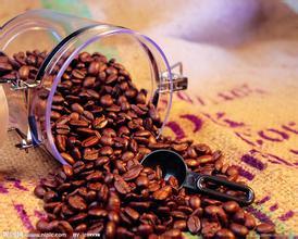 清爽舒适的柑橘感的巴拿马艾丽达庄园咖啡风味口感精品咖啡介绍