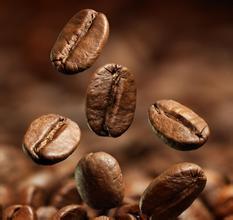咖啡滤杯什么品牌比较好-hario v60 01 02区别