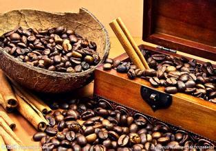 手摇咖啡磨豆机使用方法品牌哪种好怎么用