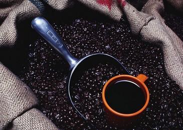 手摇咖啡豆研磨机操作