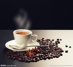 诺瓦咖啡机显示P是什么意思使用教程维修保养