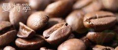 印尼PWN 黄金曼特宁G1水洗精品咖啡豆烘焙度差别手冲口感