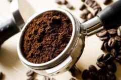 埃塞日晒耶加雪菲G1洁蒂普沃卡精品咖啡豆种类、品牌推荐及庄园