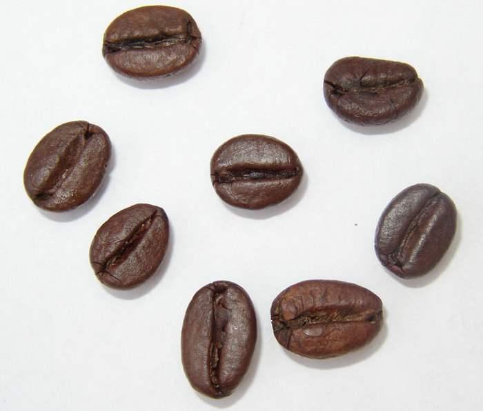 云南产咖啡豆的品质如何,与普通咖啡有何区别