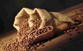 埃塞俄比亚咖啡文化介绍,埃塞俄比亚咖啡气候种植