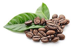 星巴克咖啡豆种类介绍