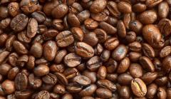 过期咖啡豆的处理 练习豆