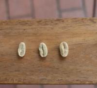 单品咖单品咖啡豆推荐 瑰夏咖啡与耶加雪菲咖啡豆手冲风味特点