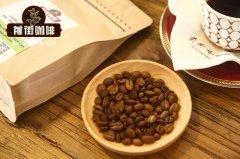 咖啡的种类介绍:蓝山、爪哇、曼特寧、摩卡、巴西咖啡品种及特点