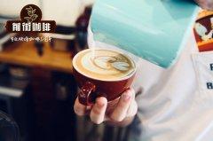 澳瑞白咖啡的制作方法教程 luckin coffee澳瑞白咖啡好喝吗?