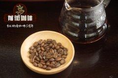 肯尼亚小红莓水洗处理AB咖啡豆 肯尼亚咖啡豆AB和AA的风味区别