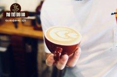 什么是绿山咖啡?绿山咖啡多少钱一杯 绿山咖啡价格多少