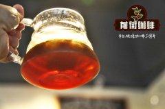 sca官网_SCA精品咖啡协会_SCA咖啡师认证_SCA课程_咖啡学分认证