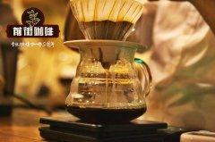 scaa咖啡师认证多少钱?scae国际咖啡师资格证去哪里考?