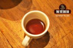 咖啡师资格证有用吗?SCA咖啡师资格证去哪里考?多少钱?