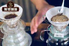 单品咖啡豆怎么做咖啡?如何确定一支单品咖啡豆的冲煮参数?