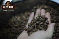 泰国本地咖啡豆品种介绍_泰国咖啡豆怎么样_泰国咖啡豆多少钱
