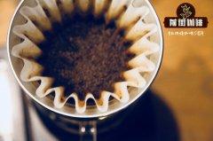 埃塞俄比亚咖啡豆种植情况介绍_埃塞俄比亚咖啡豆哪买怎么买