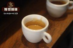 意式咖啡机如何选择咖啡豆_什么品牌的咖啡豆好用?