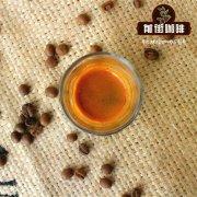 星巴克单一产地秘鲁圣伊格纳咖啡豆故事_秘鲁咖啡的价格是多少钱