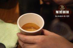 耶加雪菲原生瑰夏金兰娜手冲咖啡描述_原生瑰夏与巴拿马瑰夏区别