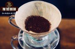 危地马拉花神咖啡贝拉庄园冰手冲教程_冰手冲花神咖啡好喝吗
