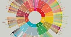 SCAA风味轮 怎么看咖啡风味轮 咖啡品鉴者风味轮 咖啡风味轮解读