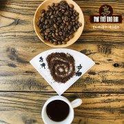 正宗蓝山咖啡品牌较什么名字 日本蓝山咖啡no1有什么特点