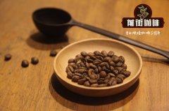 精品咖啡豆可以做意式吗 耶加雪菲soe咖啡萃取参数比例风味口感