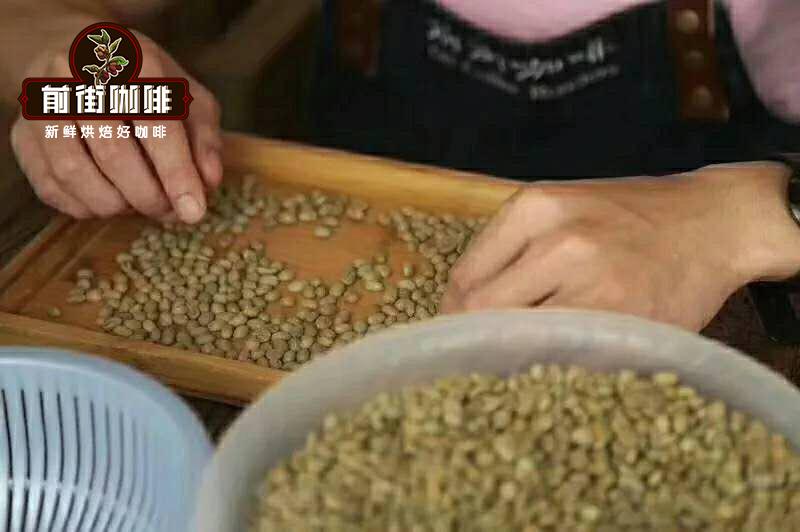 瑰夏咖啡和耶加雪菲咖啡豆区别 精品咖啡耶加雪菲咖啡豆风味特点